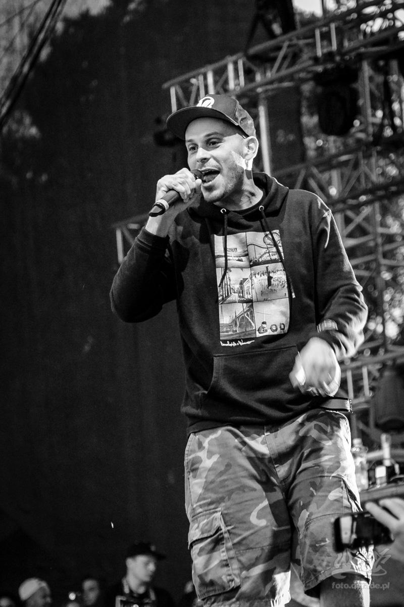 #02 Evidence, Hip Hop Kemp, 2015