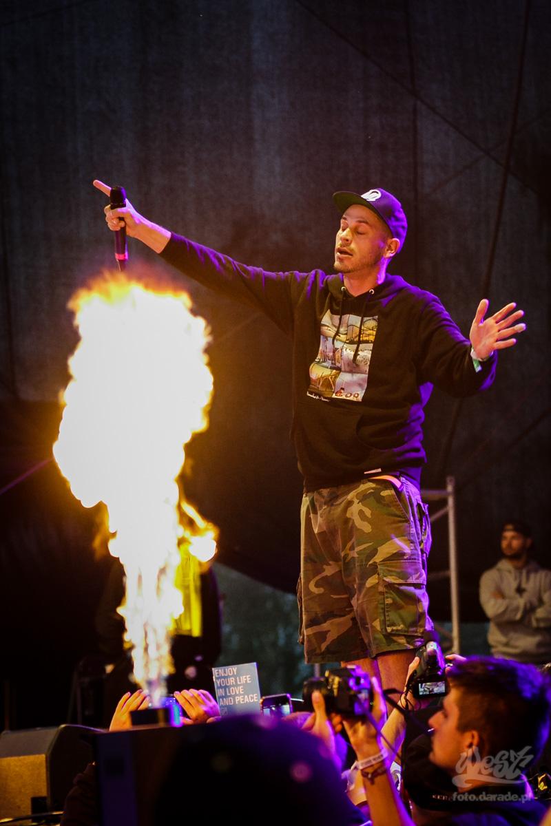 #08 Evidence, Hip Hop Kemp, 2015