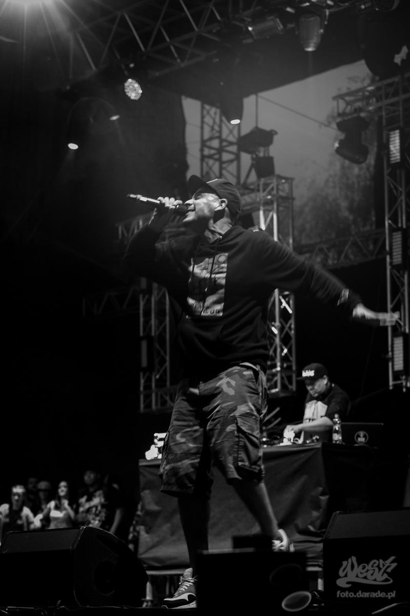 #12 Evidence x DJ Babu, Hip Hop Kemp, 2015