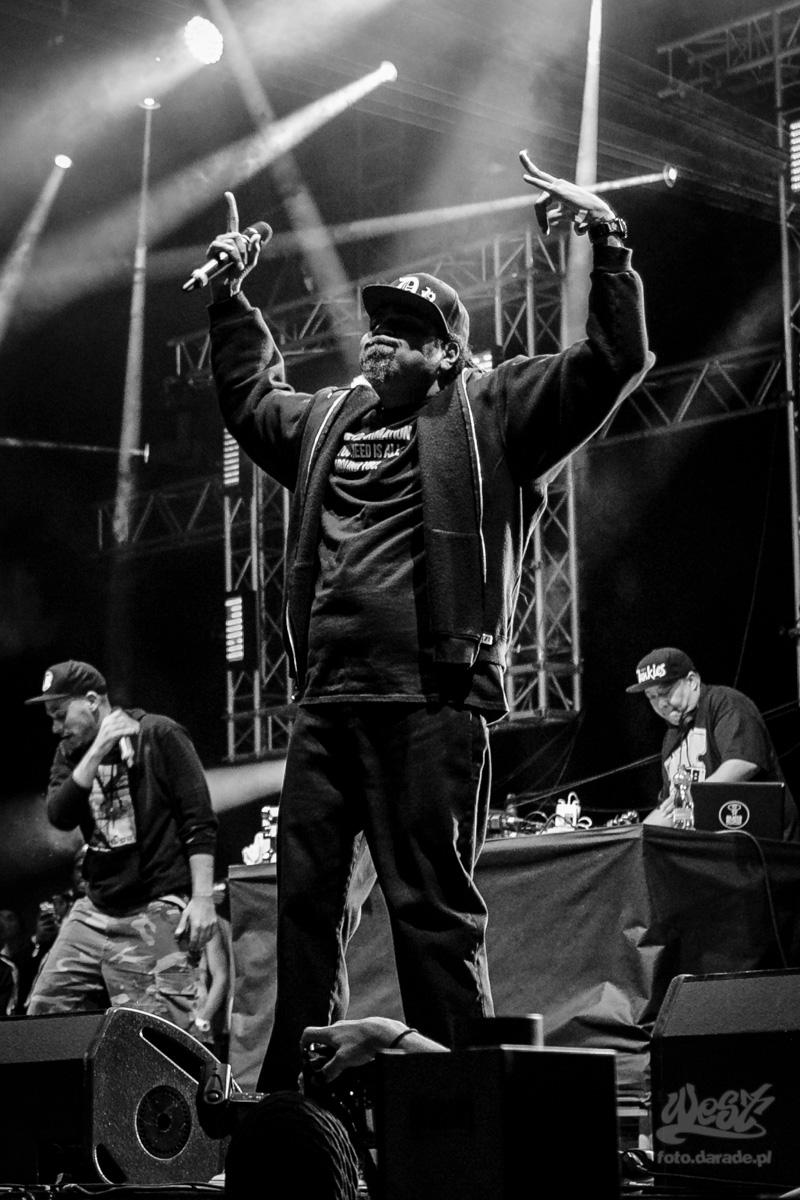 #21 Evidence x Rakaa Iriscience x DJ Babu, Hip Hop Kemp, 2015