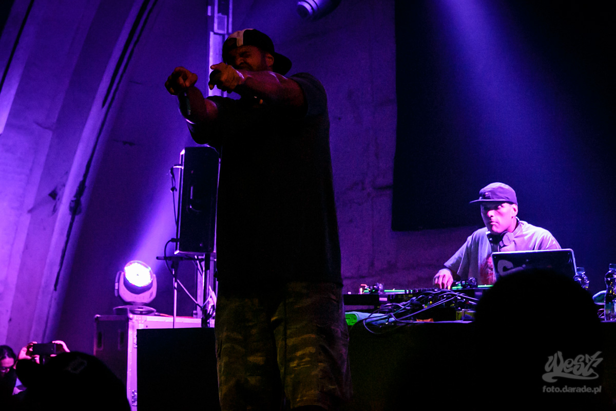 #07 Homeboy Sandman, Hip Hop Kemp, 2015
