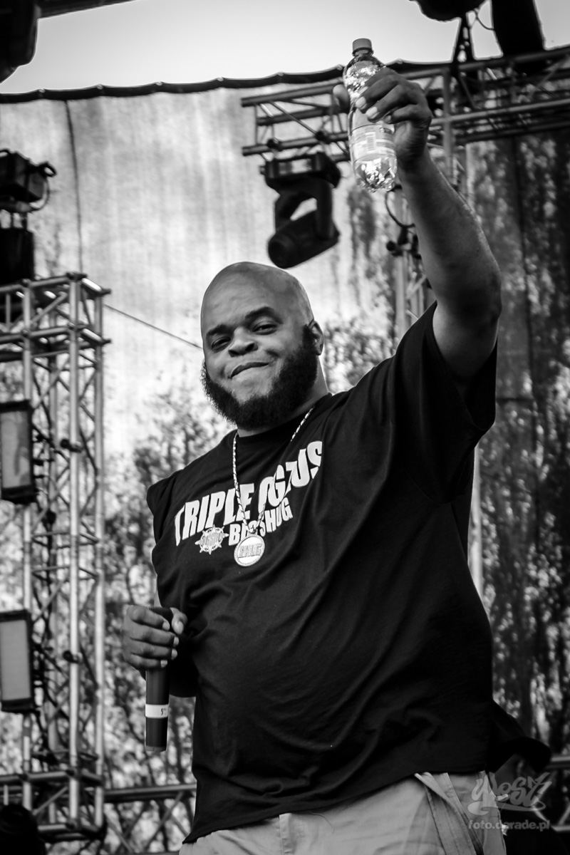 #08 Gang Starr Foundation – Big Shug, Hip Hop Kemp, 2015