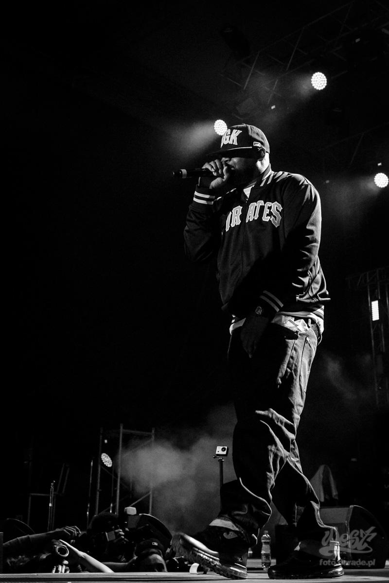#05 Ghostface Killah, Hip Hop Kemp, 2015