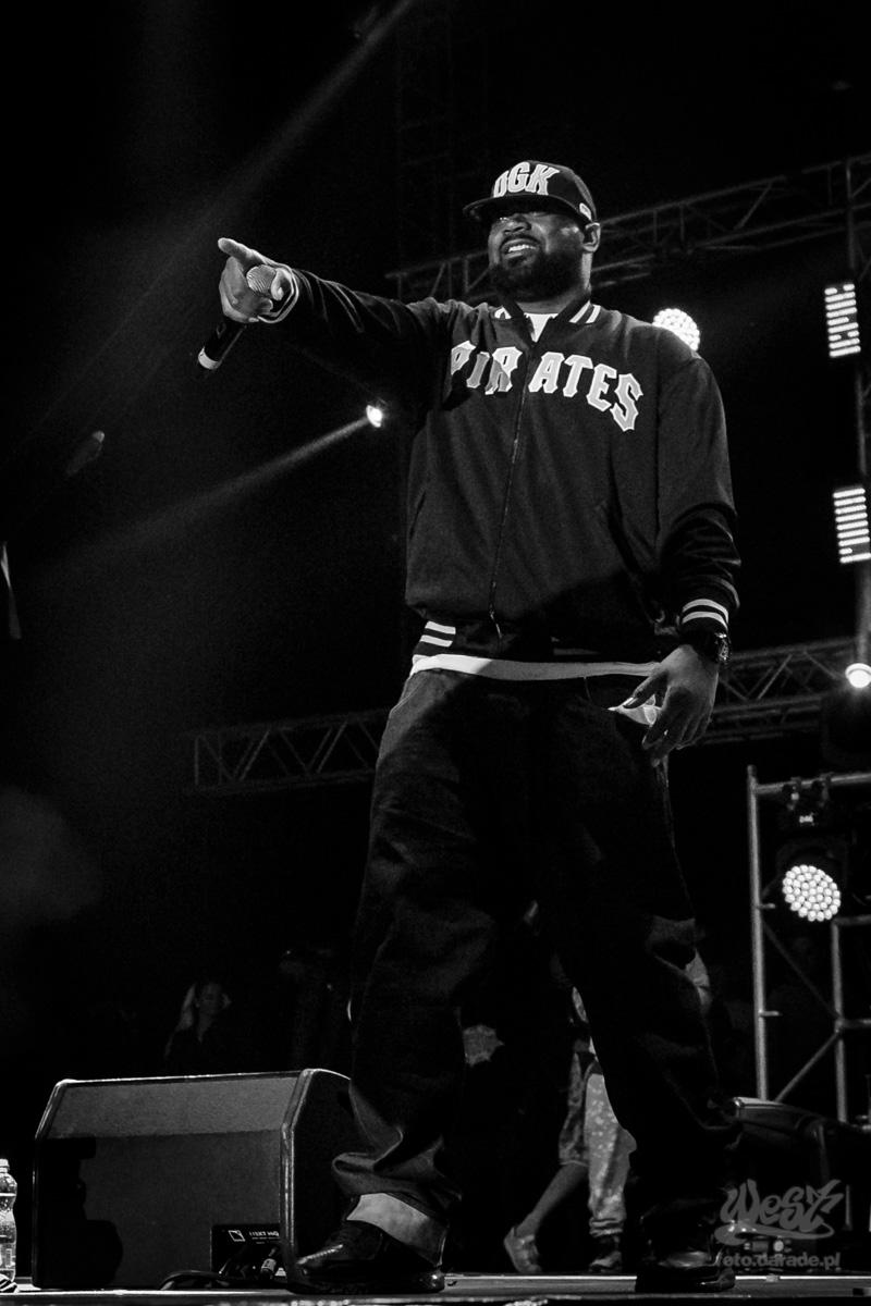 #13 Ghostface Killah, Hip Hop Kemp, 2015